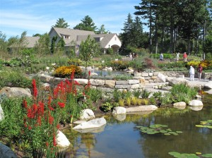 Cool off on a hot day in one of Maine's spectacular gardens, such as the Coastal Maine Botanical Gardens. Hilary Nangle photo.