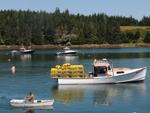 Every year, lobstermen race their boats in fishing harbors along the Maine Coast. Tom Nangle photo