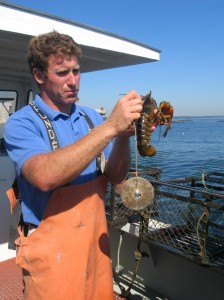 Take a lobster boat tour along the Maine coast to learn everything there is to know about the tasty crustaceans and perhaps catch your dinner, too. ©Hilary Nangle
