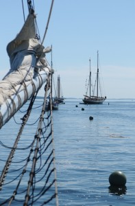 Windjammers head out of Camden Harbor for a morning sail to Rockland for the annual Parade of Sail. Tom Nangle photo.