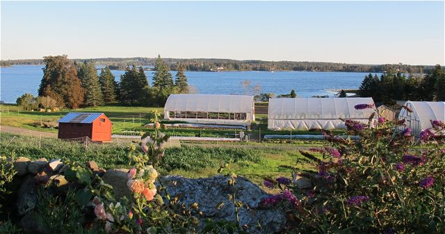 vinalhaven mature singles 127 ames cove road rd, vinalhaven, me is a 1648 sq ft, 4 bed, 2 bath home listed on trulia for $895,000 in vinalhaven, maine.