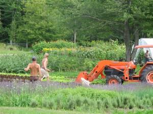 Organic guru Eliot Coleman (far right) is the man behind Four Season Farm, in Brooksville. Hilary Nangle photo