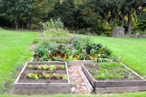 Kitchen Garden, Blair Hill. Tom Nangle photoDSC_4826