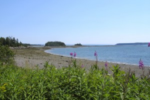 It's easy to feel as if you have Campobello island to yourself. Hilary Nangle photo. IMG_3447