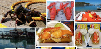 When you're ready to enjoy a lobster, skip the fancy restaurants and choose a Maine lobster shack. ©Hilary nangle