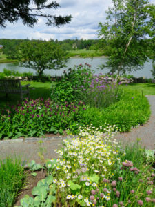 Slip away to the Charlotte Rhoades Butterfly Garden in Southwest Harbor, Maine. ©Hilary Nangle