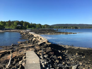 Few visitors to Southwest Harbor, Maine, ever find the causeway. ©Hilary Nangle