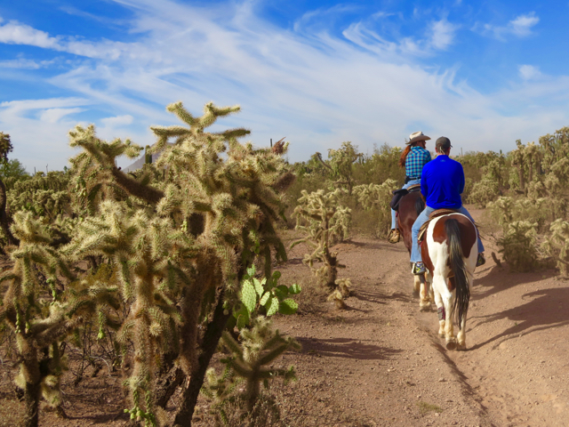 A variety of rides are offered daily at the White Stallion dude ranch. ©Hilary Nangle
