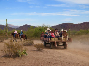 Ride a wagon to lunch in the desert. ©Hilary Nangle