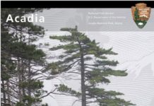 Apply now for two great Maine Artist-in-Residence programs: Acadia National Park and StudioWorks in Eastport. Image courtesy Acadia National Park