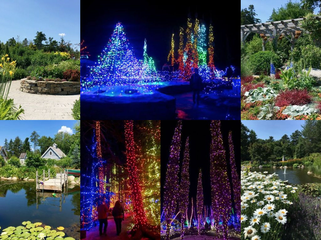 The Coastal Maine Botanical Gardens is one of my favorite experiences, both in summer and winter. Hilary Nangle